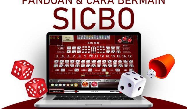 Panduan Bermain Sicbo Online Paling Ampuh Untuk Pemula